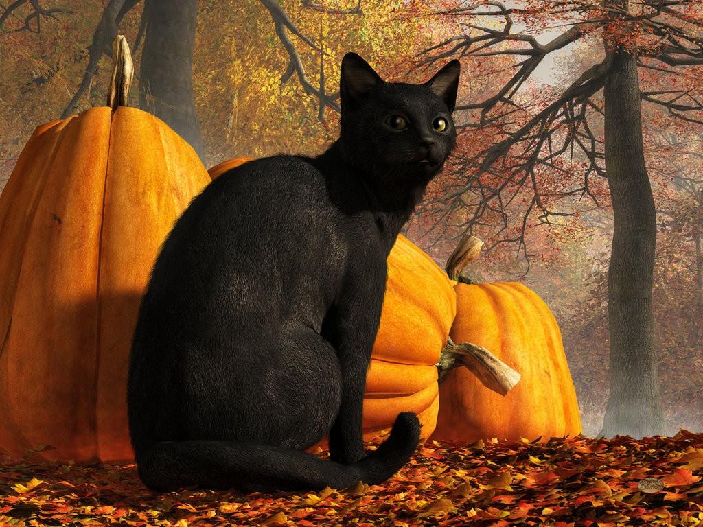 Halloween Traditions: How the World Celebrates Halloween 4