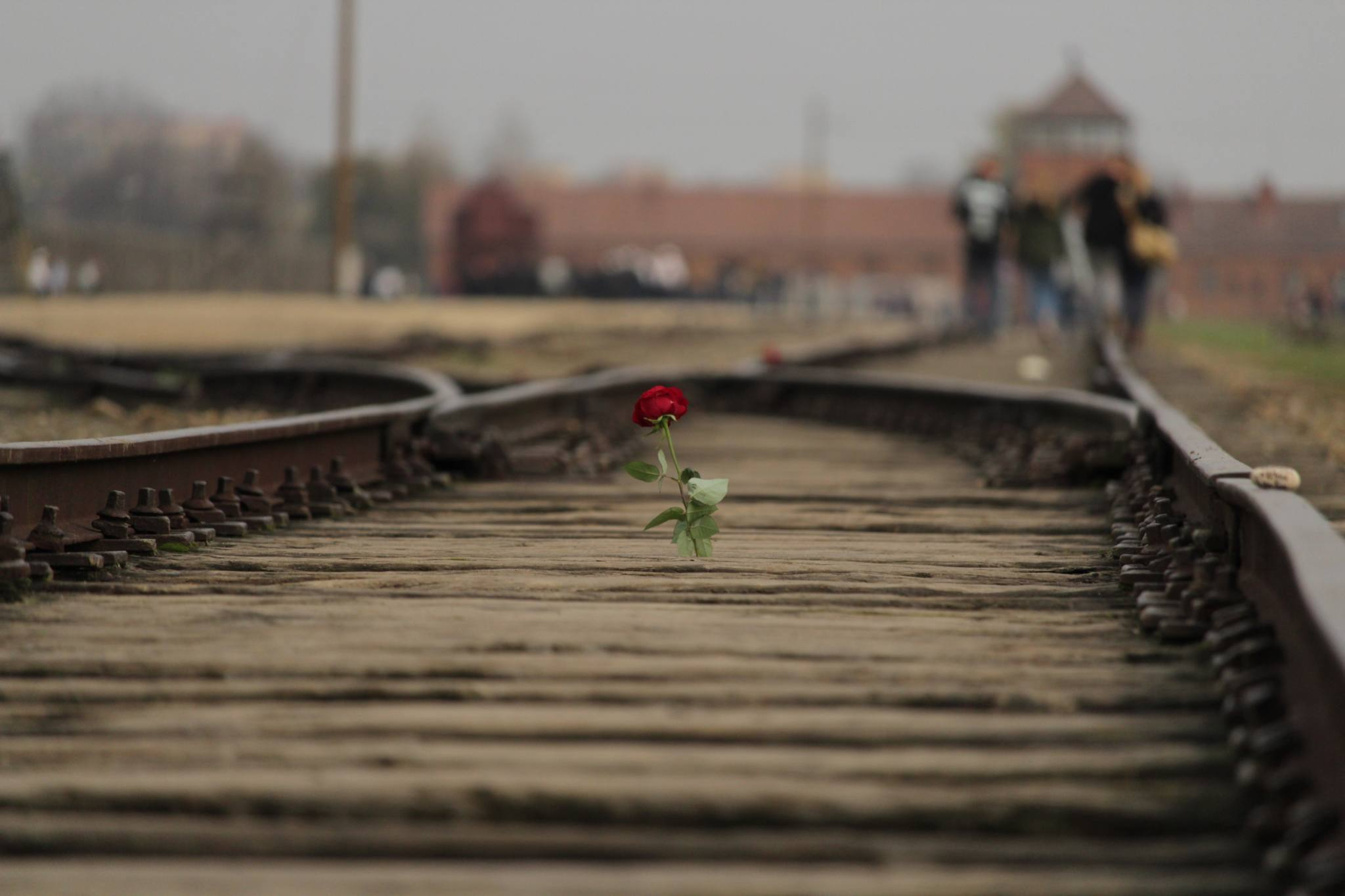 A Visitors guide to Auschwitz: Everything you Need to Know 6