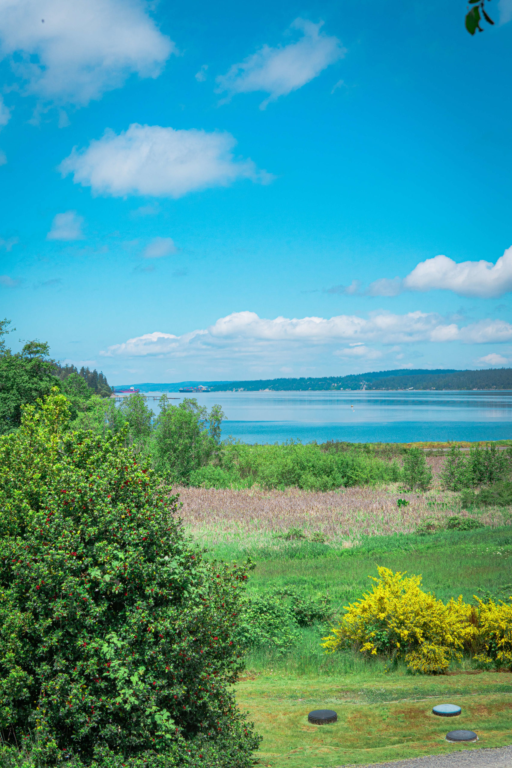 Things to do in Whidbey Island